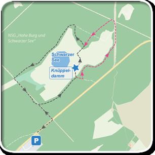 """Tourenskizze zur Tour """"Schwarzer See bei Schlemmin""""©Tourenskizzen = Kartengrundlage © Hansestadt Rostock (cc BY 3.0), Kartendaten © OpenstreetMap (ODbL und uVGB-MV) Tourendaten = Traumziel-MV.de"""